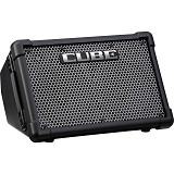 ROLAND Guitar Amplifier [CUBE-STEX] - Gitar Amplifier